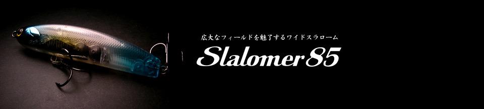 Slalomer 85